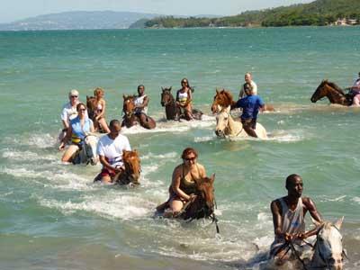 Horseback Riding N Swim Beach And Trail Hotel Amp Cruise