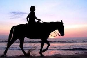 Horse back riding jamaica
