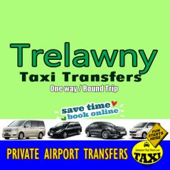 airport transfers to trelawny