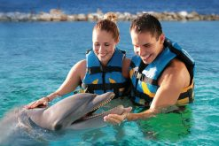 Dolphin Cove Montego Bay round trip taxi