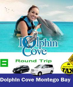 dolphin cove montego bay taxi