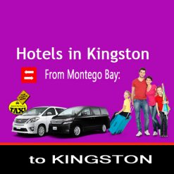 Kingston transfers