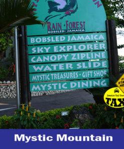 Mystic-Mountain-Rainforest-Adventures-in-Ocho-Rios